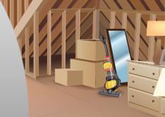 pest control for attics