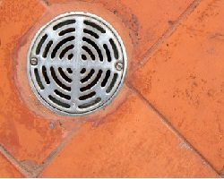 Silver drain cover surrounded by orange floor tile.