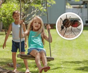Young boy pushing young girl on swing in backyard.